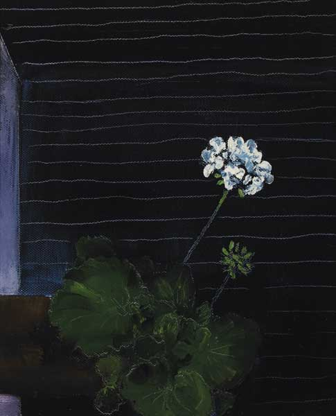 PELARGONIUMS by Jennifer Kingston  at Whyte's Auctions
