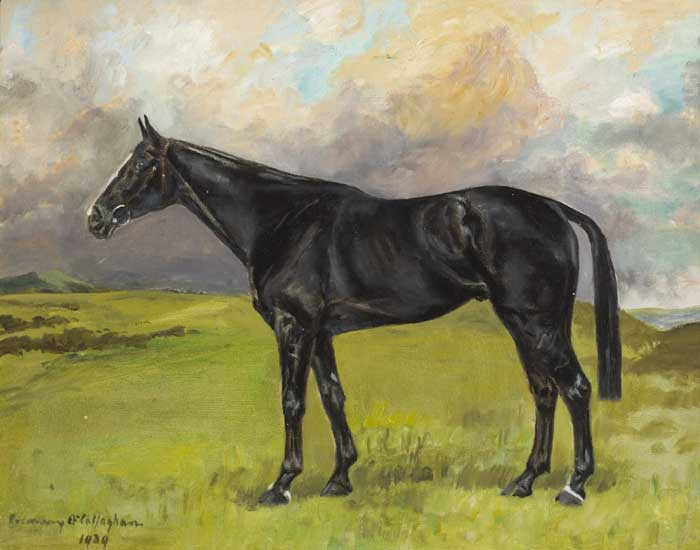 BLACK STALLION, 1939 by Rosemary O'Callaghan-Westropp (1896-1982) at Whyte's Auctions