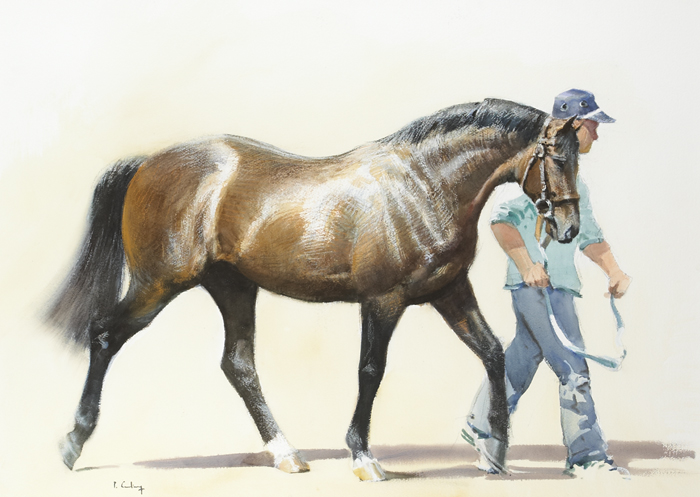 STALLION PARADE by Peter Curling (b.1955) at Whyte's Auctions