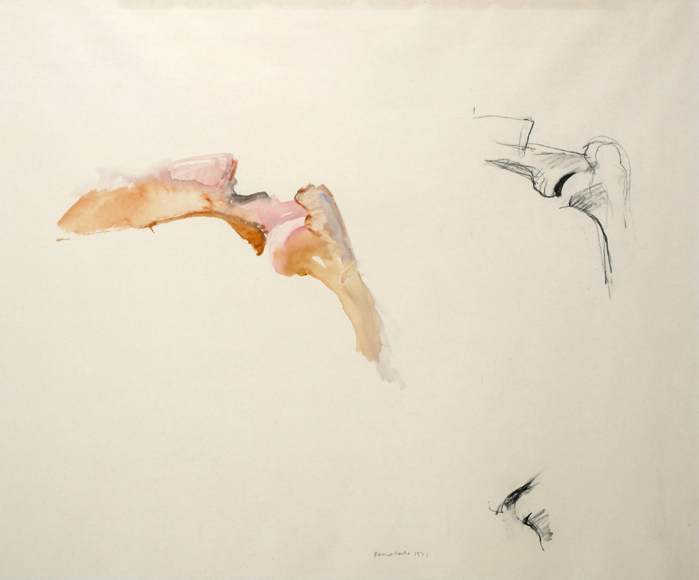 BONE DRAWING, 1971 by Barrie Cooke HRHA (1931-2014) at Whyte's Auctions