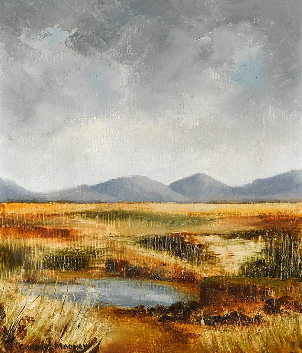 BOG LAKE, WEST OF IRELAND by Carmel Mooney  at Whyte's Auctions